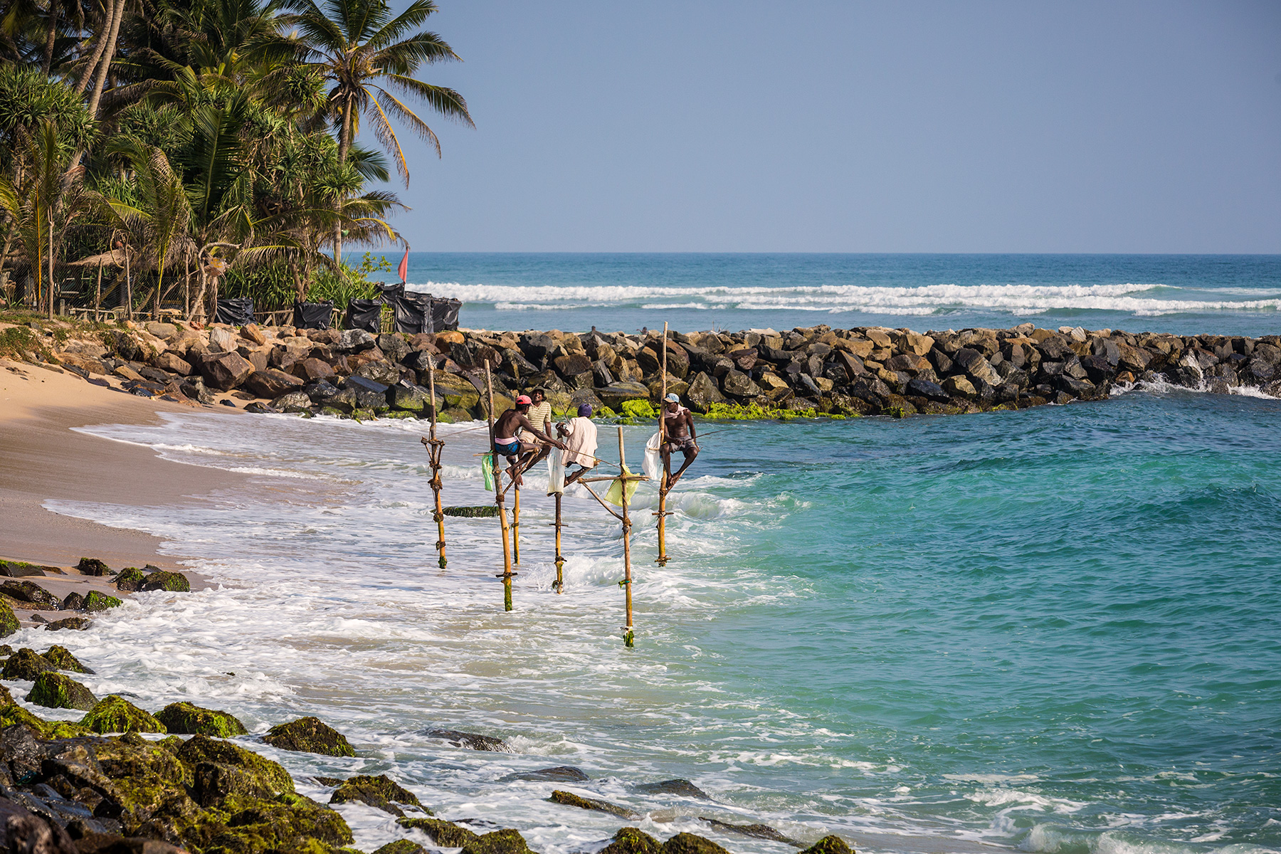 Pole fisherman in Galle